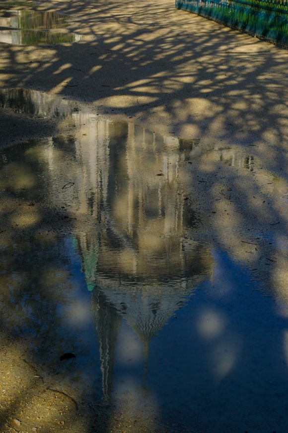 Notre Dame Reflection