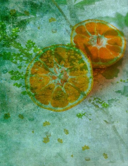 Orange and Blossom