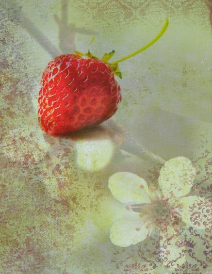 Strawberry Yellow Damask