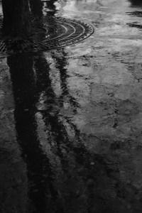 puddle B&W copy