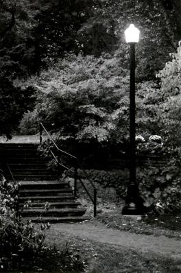 B&W Staircase