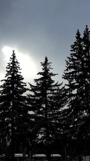 winter sun1